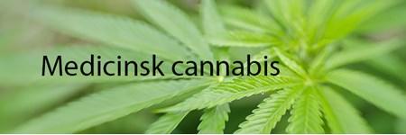 Temabillede om medicinsk cannabis med tekst