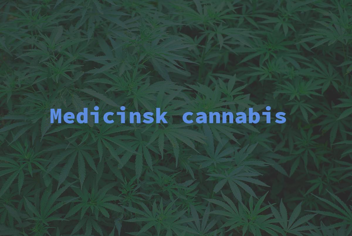 Stenocare sælger ikke længere cannabisolier i Danmark
